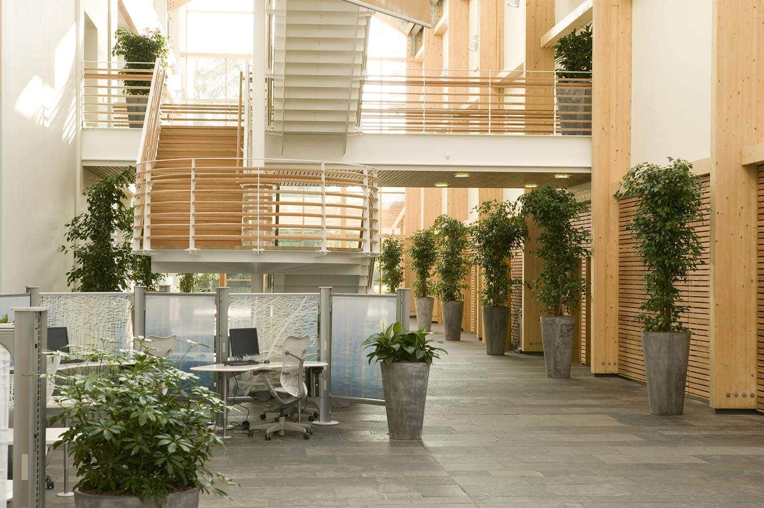 Benholm Group - Planting for Biophilic Design