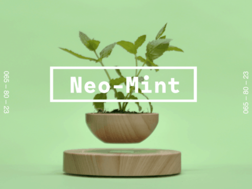 Neo Mint light tone which can be used as a contemporary alternative to grey. An optimistic hue that embodies a sense of calm which is soothing in this current stressful geopolitical climate. It encapsulates a forward-thinking mood that aligns science and technology with nature.