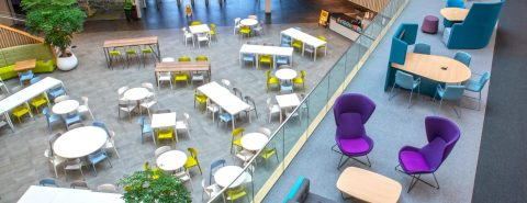 colourful Breakout Area