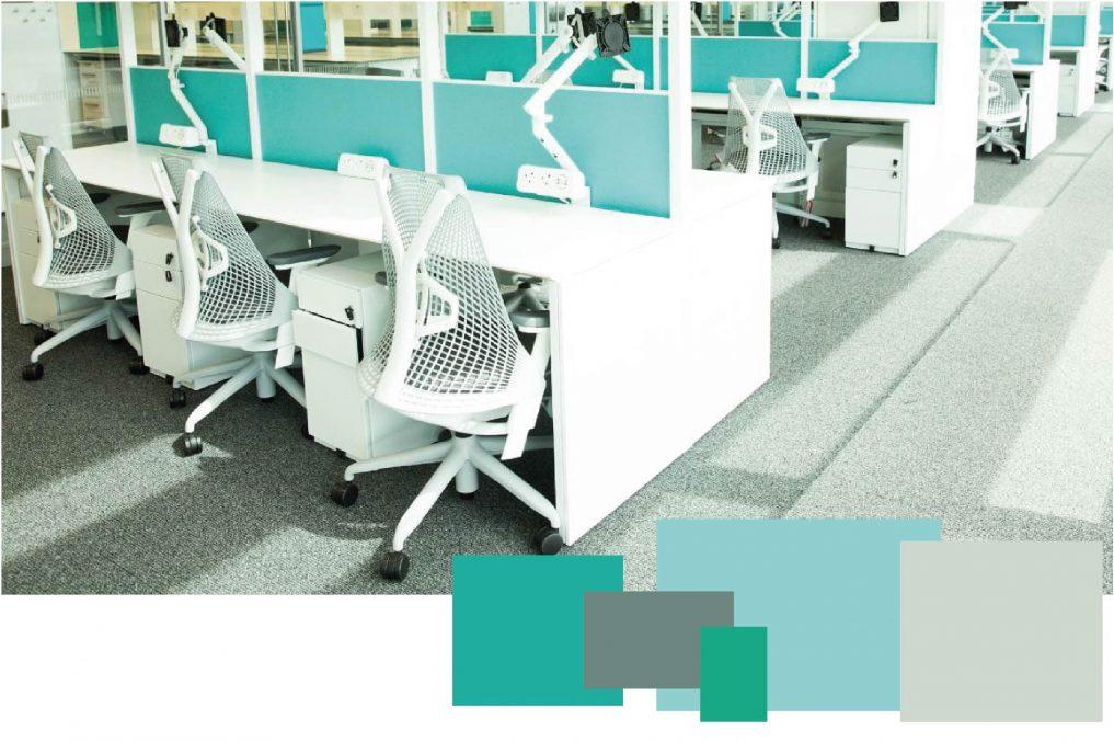 Case Study Colour Palettes AI Aqua