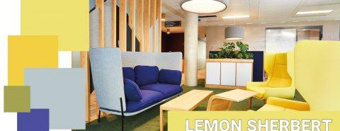 Case Study Colour Trend 2021 Palettes Office Interiors