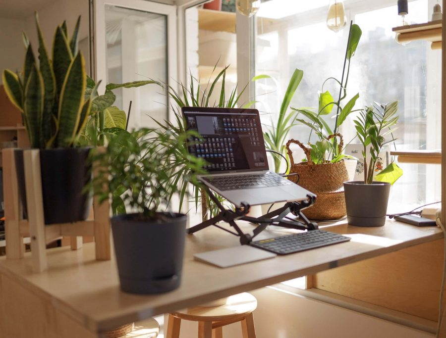 To work from home or the office? That is the question....